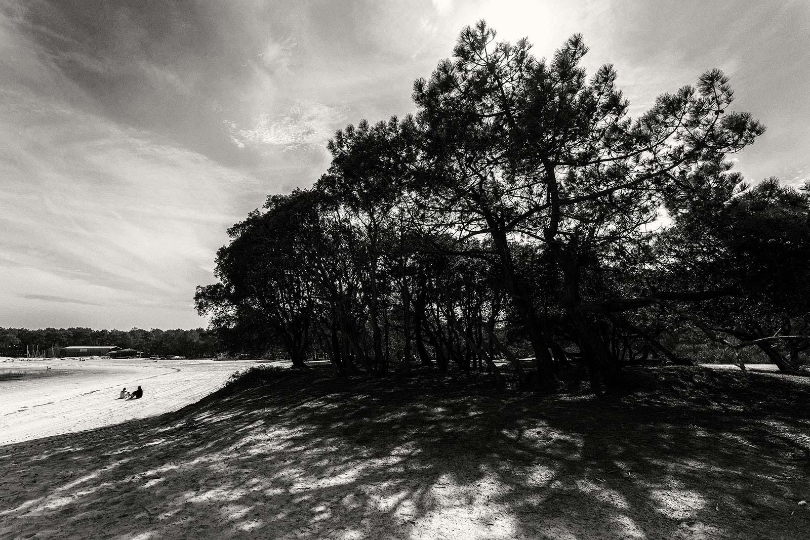 wiezirkus Lac Albret